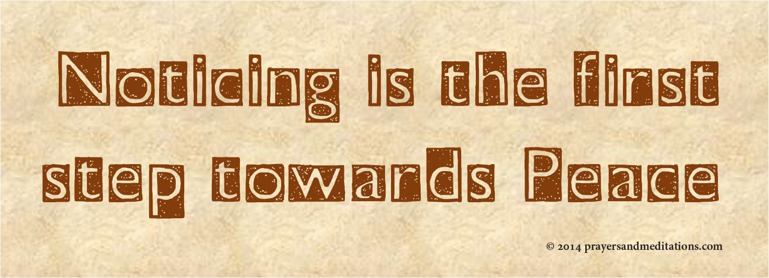 noticing-is-the-first-step-towards-peace